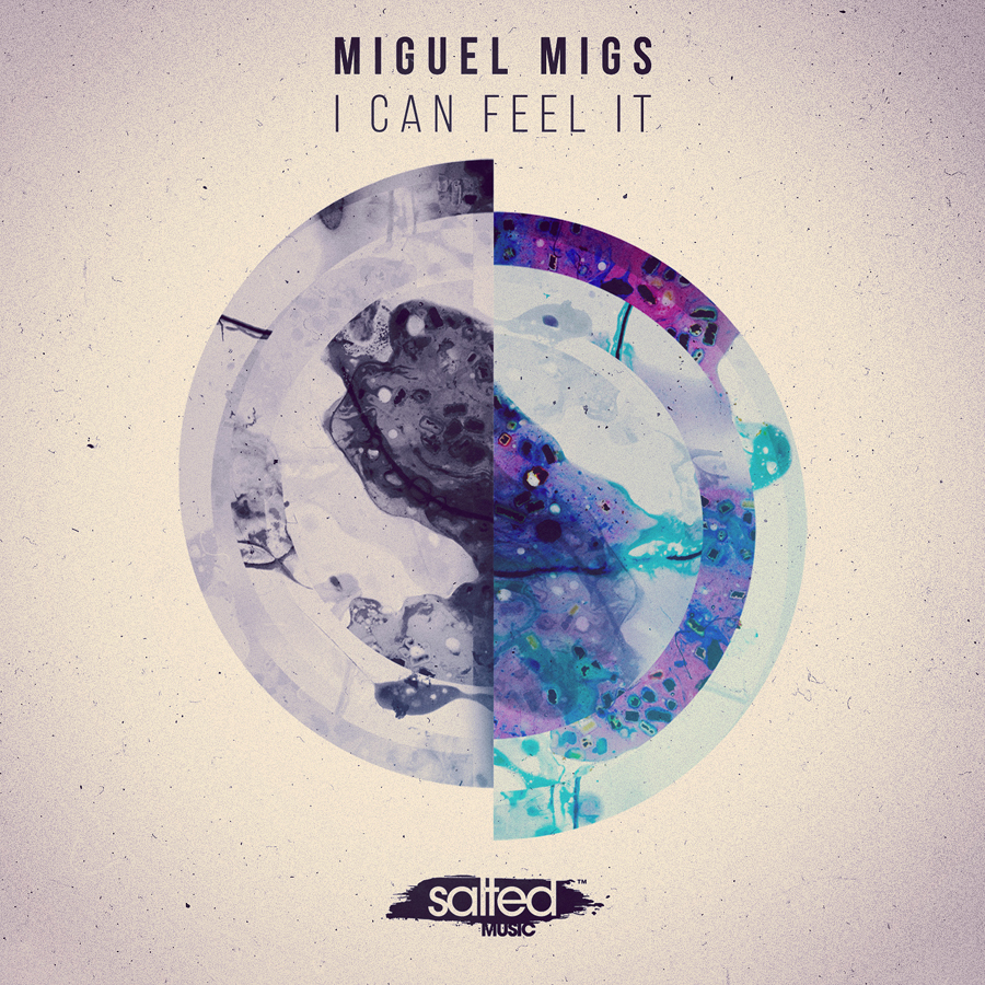 SLT075: I Can Feel It - Miguel Migs - Salted Music