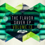 SLT076: The Flavor Saver EP Vol 13 - Salted Music