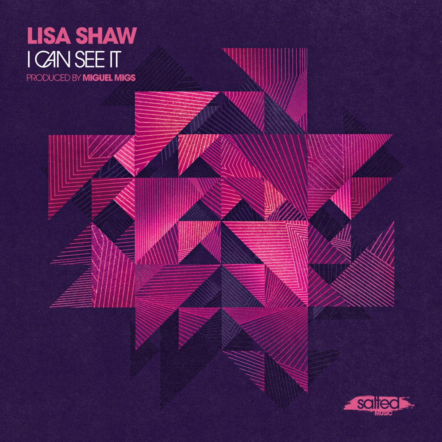 SLT097: I Can See It - Lisa Shaw - Salted Music