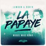 SLT099 Lumoon & Rob!n La Papaye (Salted Music)