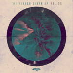 SLT114: The Flavor Saver EP Vol. 20 (Salted Music)
