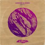 SLT128: Gin'To - Lumoon & Rob!n (Salted Music)