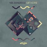 SLT134: Gift Horse - Neil Smallridge (Salted Music)