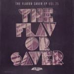 SLT152: The Flavor Saver EP Vol. 25- Various Artists (Salted Music)