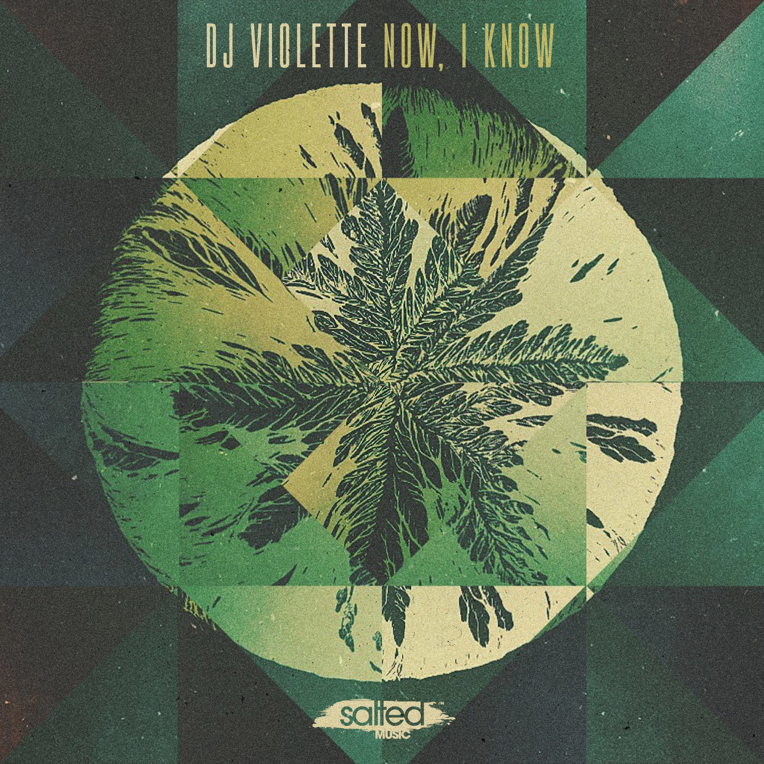SLT155: Now, I Know DJ Violette (Salted Music)