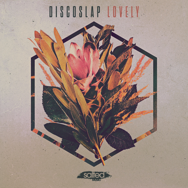 SLT201: Lovely - Discoslap (Salted Music)