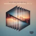Miguel Migs feat Andy Allo - Sensations (Remixes PT.1) Soulfuric Deep