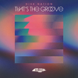 SLT207: That's The Groove - Disk Nation (Salted Music)